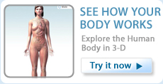See how your body works. Explore the Human Body in 3-D. Try Body Maps Now